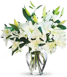 Fragrant White Lilies Valenttine's Day Bouquet