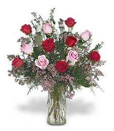 One-Dozen Pink & Red Roses