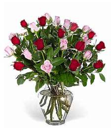 2-Dozen Red & Pink Birthday Roses