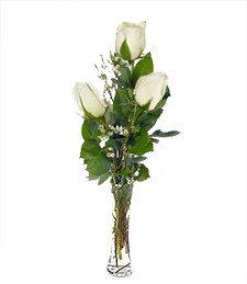 Three White Love Roses