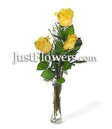 Three Yellow Birthday Roses