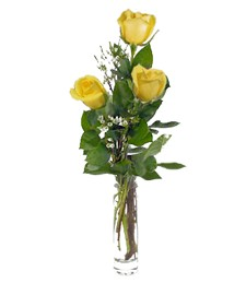 Three Yellow Prom & Wedding Roses