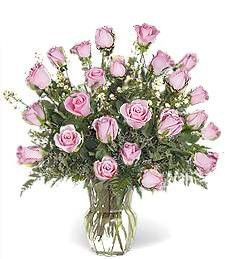Two Dozen Pink Get Well Roses
