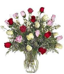 Two-Dozen Assorted Get Well Roses