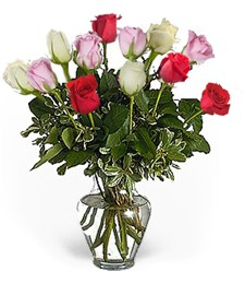Gorgeous Get Well Roses (Assorted)