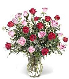 Two-Dozen Red & Pink Love Roses