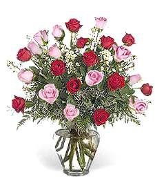 Two-Dozen Pink & Red Roses