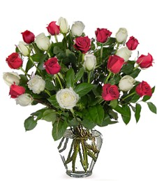 Two-Dozen Red & White Roses