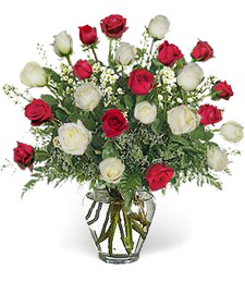 Two-Dozen Red & White Love Roses