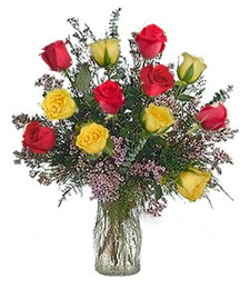One-Dozen Red & Yellow Thinking of You Roses