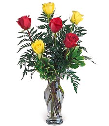 Half-Dozen Red & Yellow Roses
