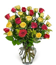 Two-Dozen Red & Yellow Thinking of You Roses