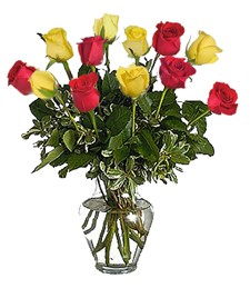 One-Dozen Red & Yellow Birthday Roses