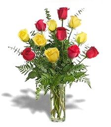 One-Dozen Red & Yellow Valentine's Roses