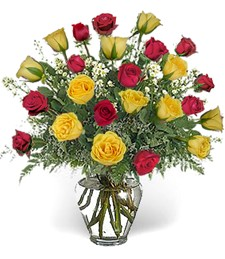 Two-Dozen Red & Yellow Prom-Wedding Roses