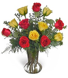 One-Dozen Red & Yellow Love Roses