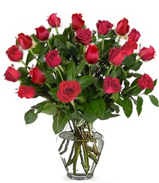 Two-Dozen Red Get Well Roses