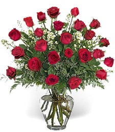 2-Dz 'Just Because' Red Roses