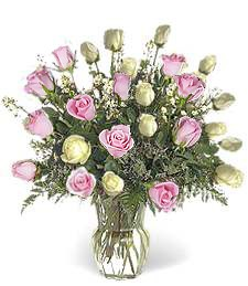 Two-Dozen White & Pink Love Roses