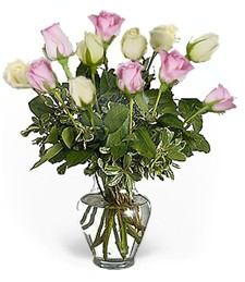 One-Dozen White & Pink Thinking of You Roses
