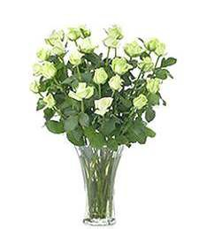Two-Dozen White Birthday Roses