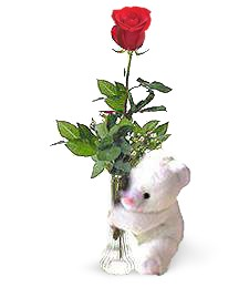 One Perfect Birthday Rose & Bear