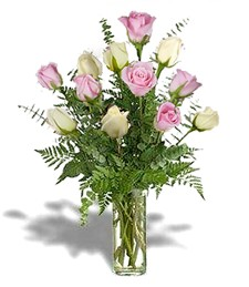 One-Dozen White & Pink Get Well Roses