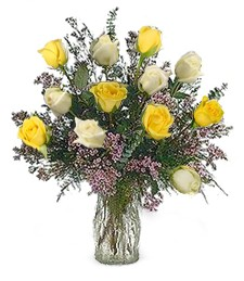 12 White & Yellow Valentine's Roses