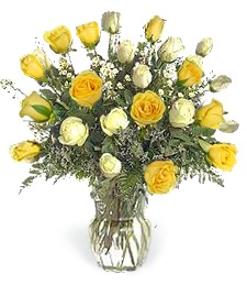 2-Dz White & Yellow 'Just Because' Roses