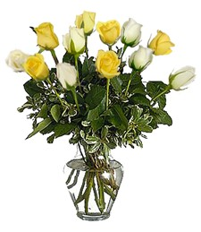 1-Dz White & Yellow Anniversary Roses