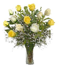 1-Dz White & Yellow Get Well Roses