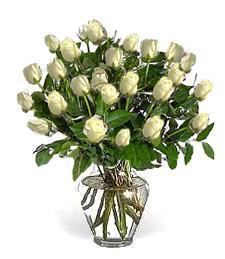 2-Dozen White Thinking of You Roses