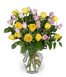 2-Dz Yellow & Pink Birthday Roses