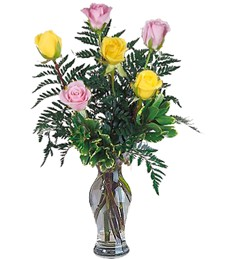 Half-Dozen Pink & Yellow Birthday Roses
