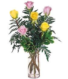 Half-Dozen Pink & Yellow Roses