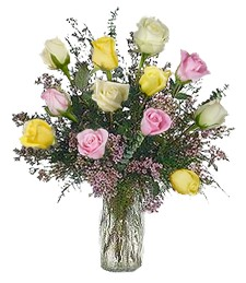 1-Dz Assorted Roses