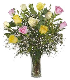 1-Dz Assorted 'Just Because' Roses