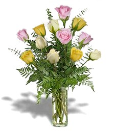 1-Dz Assorted Get Well Roses