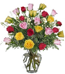 2-Dozen Assorted Congratulations Roses