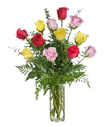 1-Dozen Assorted Congratulations Roses