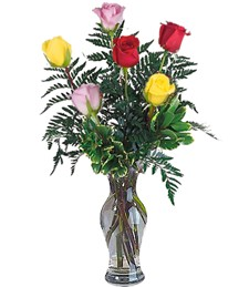 Half-Dozen Assorted Get Well Roses