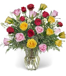 2-Dozen Assorted Love Roses