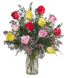 1-Dozen Assorted Get Well Roses