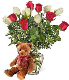 Bear w/ 1-Dz Red & White New Baby Roses