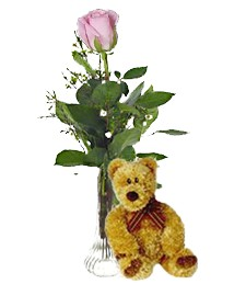Single Pink Birthday Rose & Bear