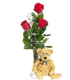 3 Red Birthday Roses & Bear