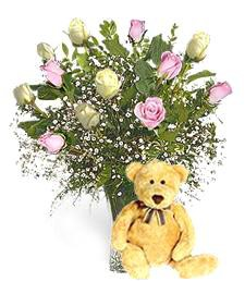 Bear w/ 1-Dz White & Pink Birthday Roses