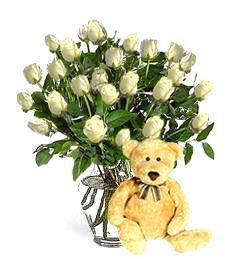 Bear w/ 2-Dz White Birthday Roses