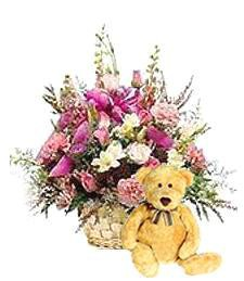 Pink Spring Love Basket & Bear