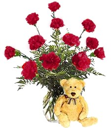 Red Birthday Carnations & Bear